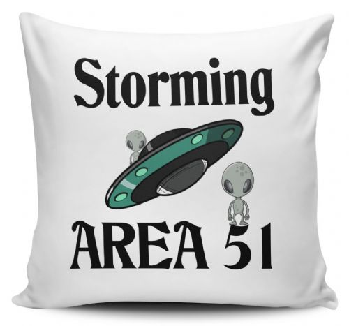 Storming Area 51 Funny Alien UFO Novelty Cushion Cover